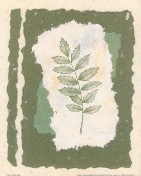 Green Herb 1 by Leslie Slattler -- 10