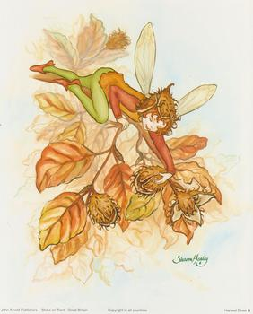 Garden Fairies C - By Sharon Healey - 10