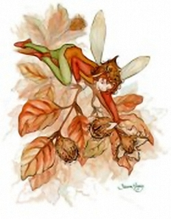 Garden Fairies B - By Sharon Healey - 10