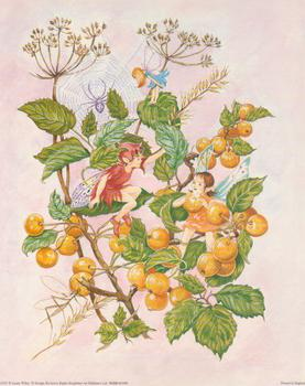 Fairies - by Lynne Willey - 10