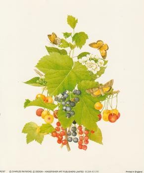 Berries by Charles Raymond - 5