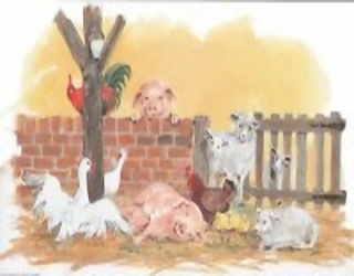 Farmyard Friends C11 Main Gallery D Charlesworth
