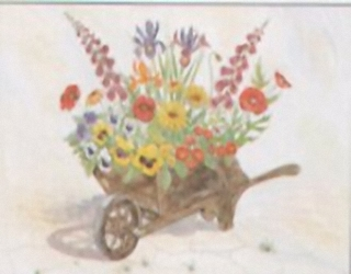 Flowers in a Wheelbarrow I3 Main Gallery Not Known
