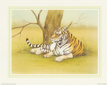 **TIGER**African Wild Animal (C) by J A Pulford 5