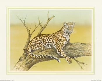 ** LEOPARD** African Wild Animal (b) by J A Pulford 5