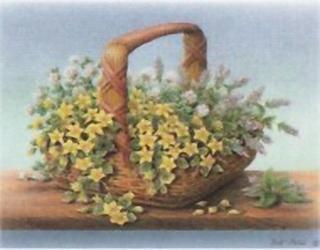 Herbal Harvest K5 Main Gallery Rob Pohl
