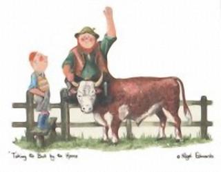 Farmer Giles 1 K5 Main Gallery Nigel Edwards