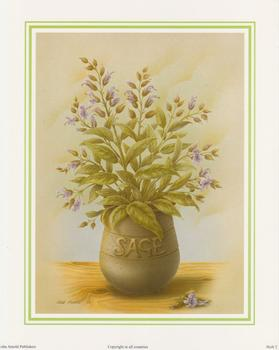Herb Print 2 - SAGE by Rob Pohl - 10