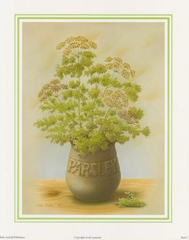 Herb Print 3 - PARSLEY by Rob Pohl - 10