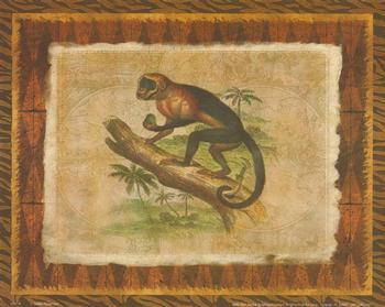 African Animal - Monkey - 10