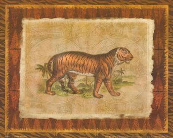 African Animal - Tiger - 10
