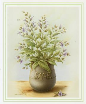 Sage Herb Print ** by Rob Pohl ** 5