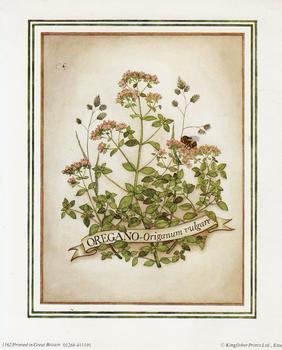 OREGANO Herb Print ** ** 5