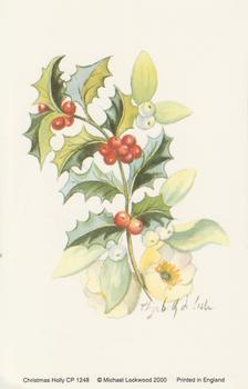 PACK OF 5 --- Christmas Holly -- Print by Michael Lockwood - 100mm x 150mm -