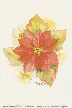 PACK OF 5 - Xmas Flower - Poinsettia - Michael Lockwood 4