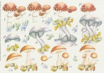 PACK OF 5 - Step by Step Michael Lockwood Craft Sheet No 47 - Variety of Mushrooms - . -Jacksons mail Order