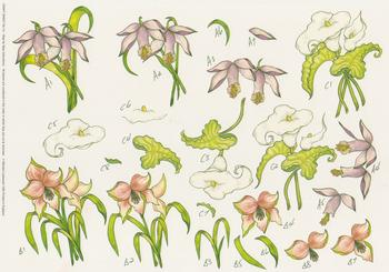 PACK OF 5***Loreta Lily Orchid Arum Lily On Craft Sheet No 14 by Michael Lockwood -Jacksons mail Order