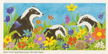 PACK OF 5 ****Badger Topper / Print - 4