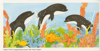 PACK OF 5****Dolphins Topper / Print - 4