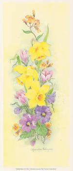 **PACK OF 5**Daffodil Print CP1109 by Christine Coleyan . -Jacksons mail Order