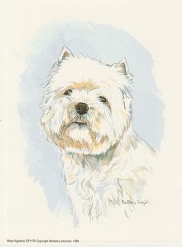 PACK OF 5****West Highland Dog ** Westie ** CP1178 by Kathryn Dalziel . Kathryn Dalziel