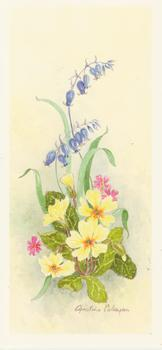 PACK 5 **** Spring Flowers 3 with Yellow Flowers by Christine Coleyan . -Jacksons mail Order