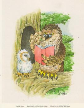 PACK OF 5 *** The Wise Owl *** - A Print by Michael Lockwood 4.5