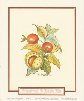 pack of 5 ***Chestnut and Rose Hip  ~ CP1167 ~ A Elizabeth de Lisle Print - 5