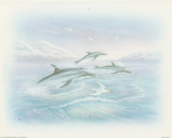 Arctic Life Dolphins Scene A - Rob Pohl Print - 10