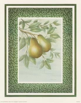 Fruit C - Pears by Rob Pohl 10