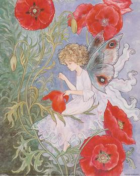 Flower Fairies sewing red flower **A Jacky Fenton Print ** B2408 ~~ 10