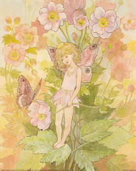 Flower Fairies with Butterfly **A Jacky Fenton Print ** B2409 ~~ 10
