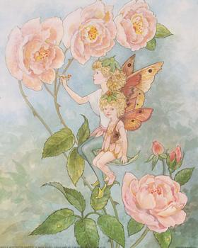 Flower Fairies - 2 Fairies Sitting on a Flower -  **A Jacky Fenton Print ** B2410 ~~ 10