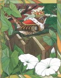 King Robin C3 Main Gallery Cornelia Ellinger