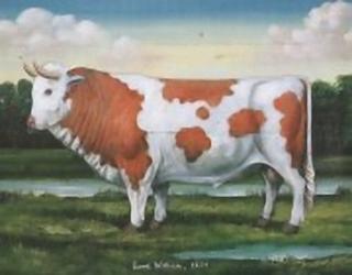 Down On The Farm B1 Main Gallery Geoff Heald