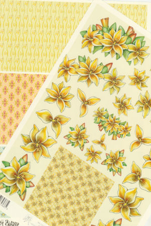 2 Sheets - Sheets Mary Rahder Floral Decoupage Sheet with  Backing Paper Specials RRP £1.25