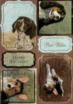Die Cut Dogs - Pointer, Corgi & Spaniel *