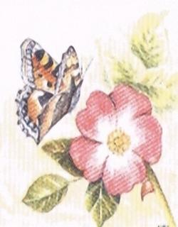 Briar Rose Kits HRC
