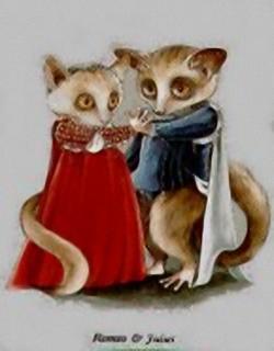 Romeo & Juliet Kits Susan L Herbert