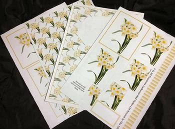 4 Sheet Spring Flowers Kit inc Envelope . *