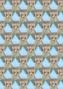 Giraffe on Safari BACKING SHEET - Part of the Wild Animal Range - OTHER MATCHING ITEMS - PT099, PTO102, PTO100 . -Jacksons mail Order