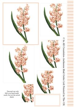 Hyacinth Spring Flower - PYRAMID SHEET - Part of the Fancy Floral Disc2 Range - Other Matching Items include PT126 PT127 PT128 . -Jacksons mail Order