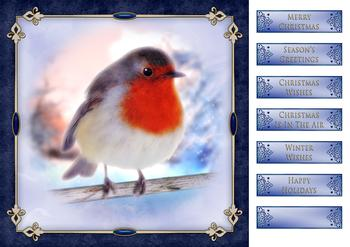 Christmas Robin 8 x 8 Card Front .  Die-cut captions