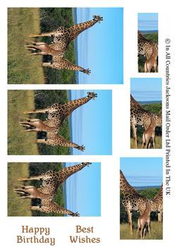 Giraffe on Safari - PYRAMID SHEET - Part of the Wild Animal range - OTHER MATCHING ITEMS - PTO100, PTO101, PTO102 . -Jacksons mail Order