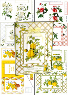 Pack 4 x  Floral Pyrimage for Larger Cards py0127/155/156/157 t papertole.co.uk