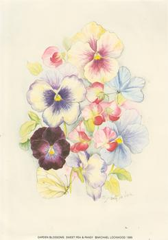 Garden Blossoms - SWEET PEA & PANSY - 5