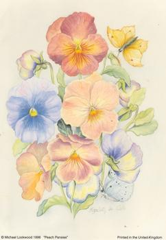 PEACH PANSIES - 5