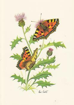 Butterfly and Thistle Flower - Card Topper - 5