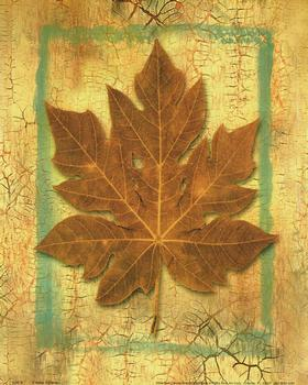 Autumn Leaves 5 ** 10