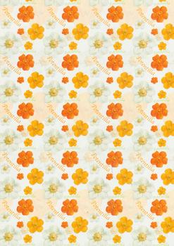 Potentilla Backing Paper Specials RRP 60p